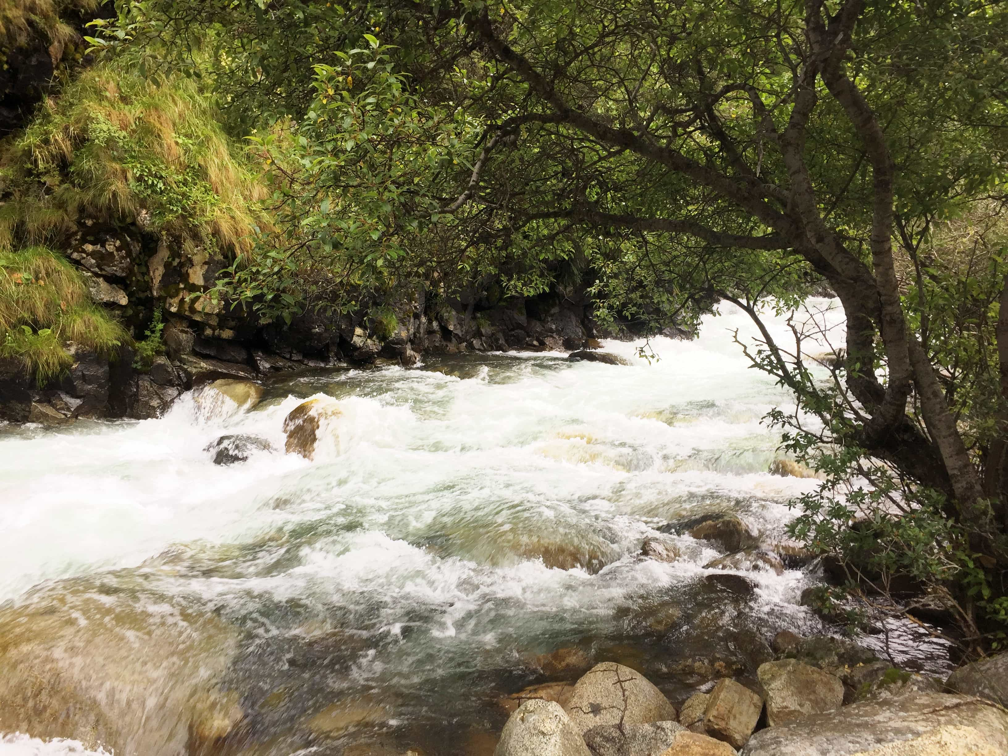 Bank of the mountain river in Tibet