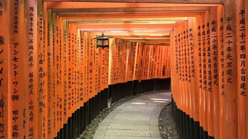 Red torii gates at the Fushimi Inari shrine