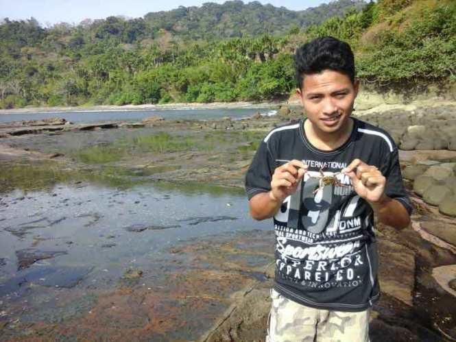 Bermain Kepiting di Pantai Nanggelan