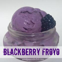 Blackberry Froyo Recipe - wonkywonderful.com