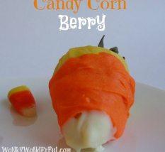 Candy Corn Berries