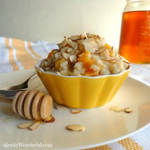 Brown Rice Pudding topped with apricots and almonds in yellow bowl, honey on the side