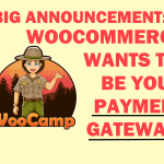 BIG Announcement📢: WooCommerce Becomes a Payment Gateway