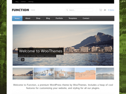 WooThemes Function WooCommerce Themes