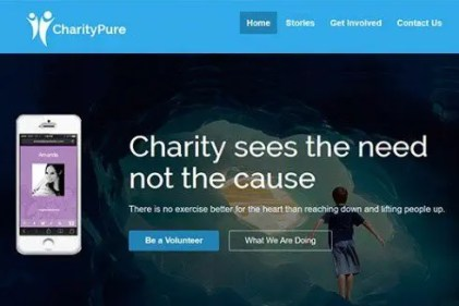 CyberChimps CharityPure WordPress Theme