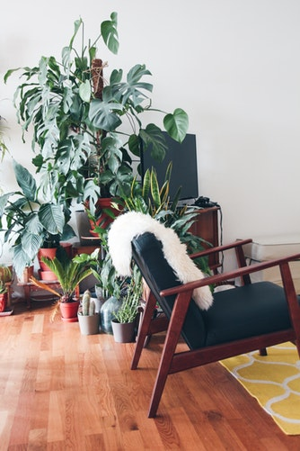 How to blend the outside & interiors in your home décor 1