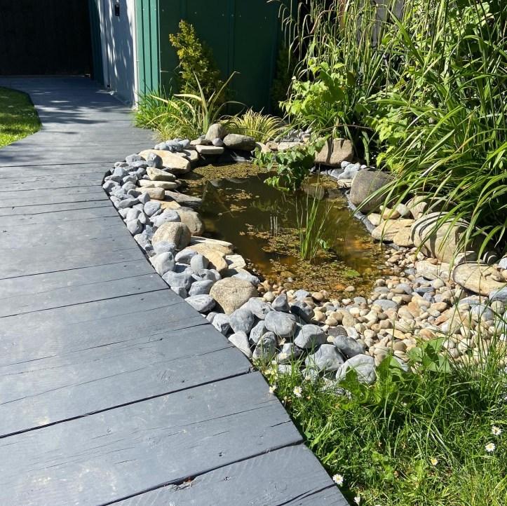 pond after