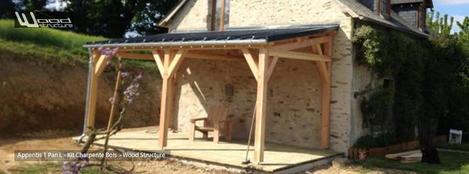 Charpente Appentis Bois Wood Structure