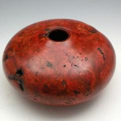 Maple Burl Red