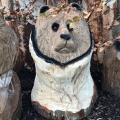 medium bear wood carving woodbank nurseries