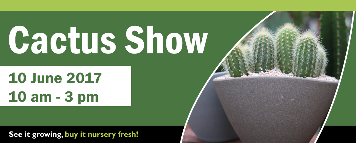 Cactus show event at Woodbank Nurseries and Garden Centre
