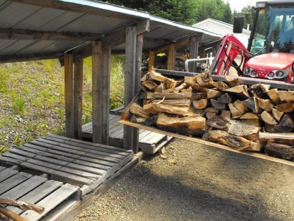 Firewood cutting.