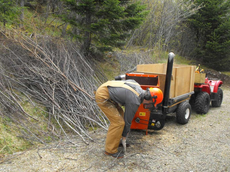 Bearcat wood chippers,70085,potable chipping,ground cover,landscaping