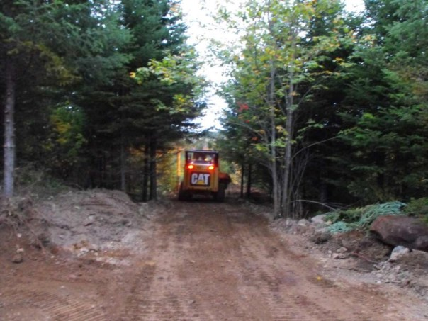 Land clearing with a CAT 257B2