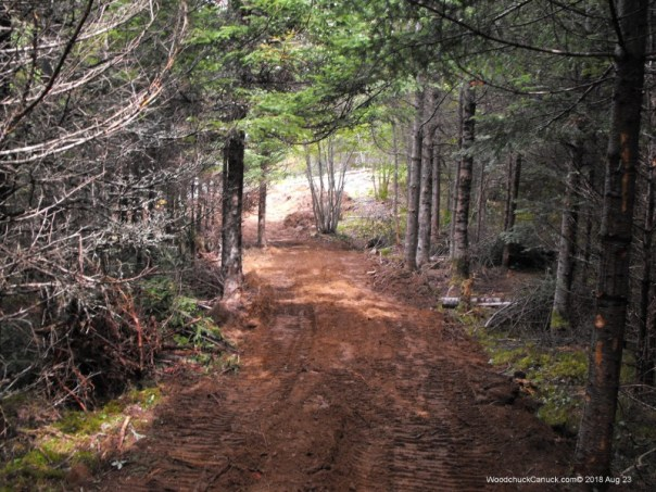 forestry,road building,landscaping