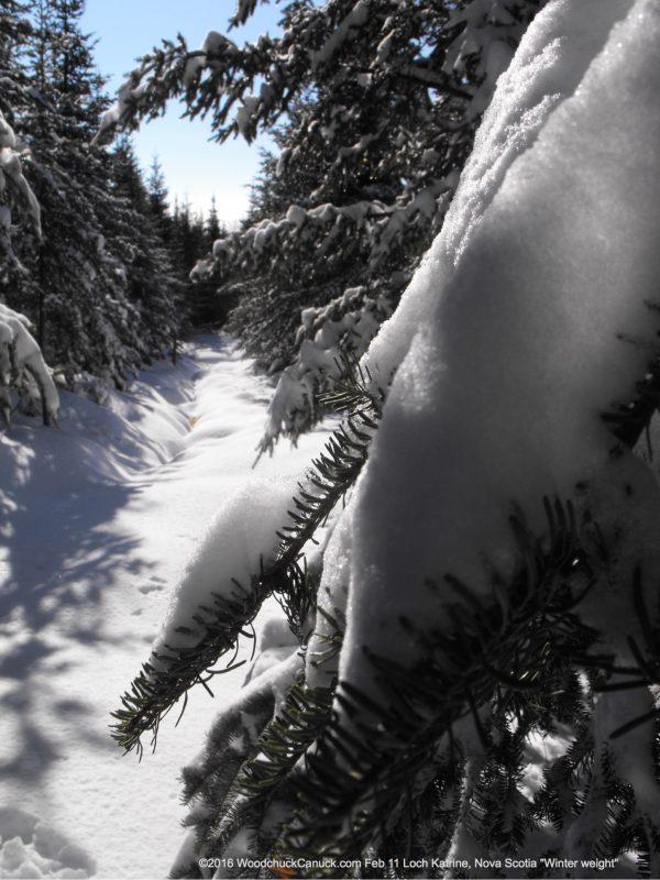 winter,snowfall,Loch Katrine,Nova Scotia