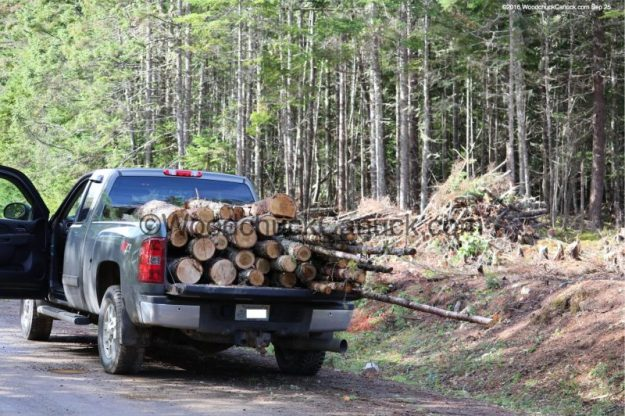 forestry,sustainability,log reindeer,small business,made in Nova Scotia,local crafts