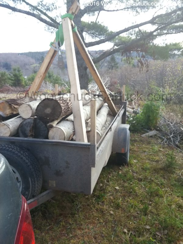 portable winches,logging,forestry