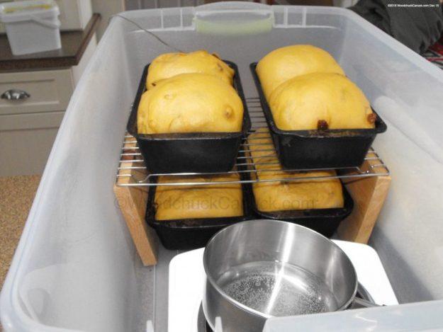 home baking,molasses raisin bread