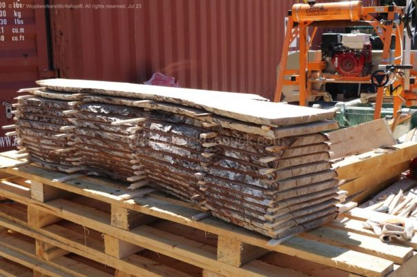 Nova Scotia sugar maple trees,sawmill business,sawmills,saw milling,salvaged woods,timber,logging,slab,woodporn,#woodworking,urban logging,urban wood,portable sawmill,hardwood,forestry,urban forestry,trees,urban lumber,slab woodworks,live edge,barn wood,woodworker,kiln,husqvarna,stihl