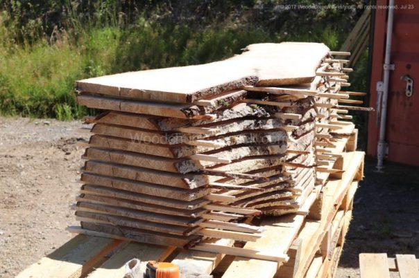 sugar maple trees,sawmill business,sawmills,saw milling,salvaged woods,timber,logging,slab,woodporn,#woodworking,urban logging,urban wood,portable sawmill,hardwood,forestry,urban forestry,trees,urban lumber,slab woodworks,live edge,barn wood,woodworker,kiln,husqvarna,stihl