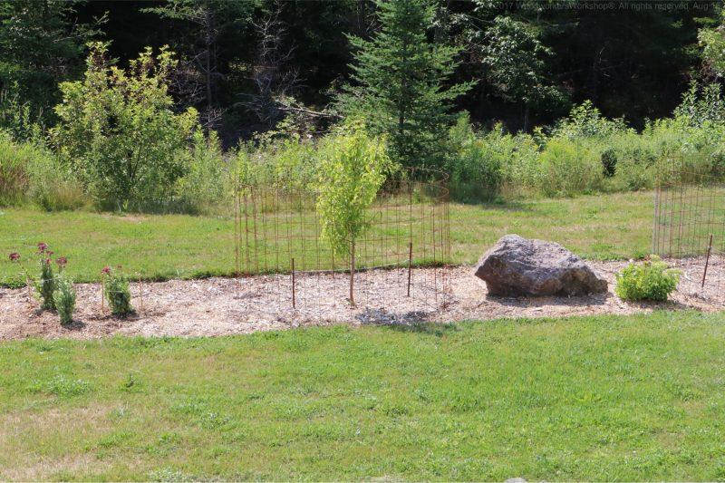 landscaping,fruit trees,gardening