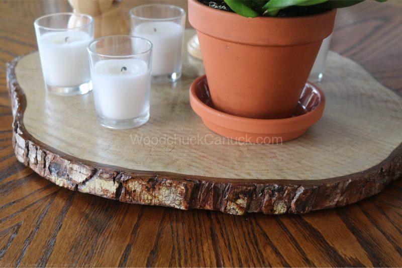 Poplar wood slice
