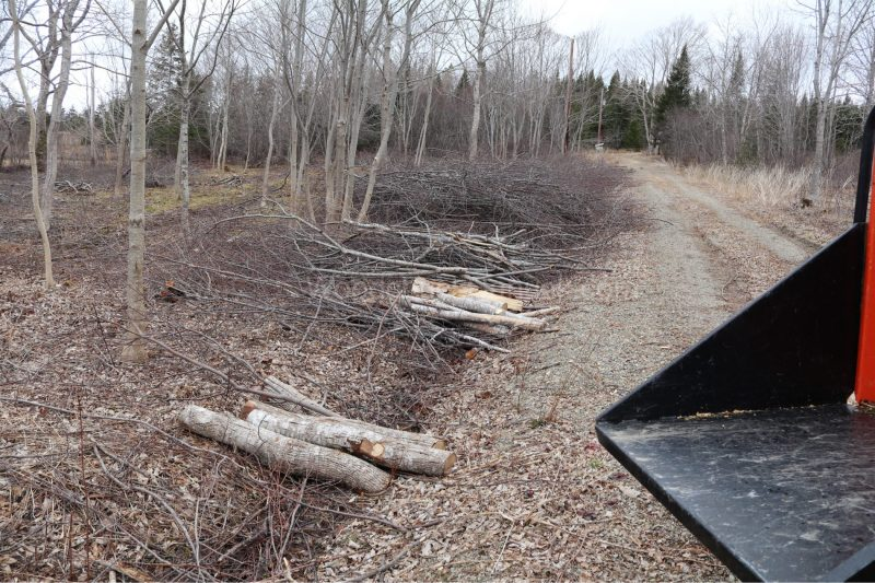 wood chipping,alders