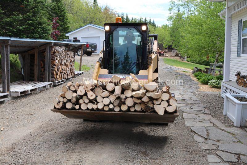 firewood,maple,ash,skidsteer