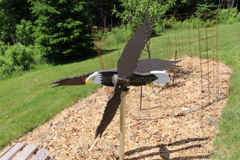 arts and crafts,Made inNova Scotia,Antigonish County,woodworkers,whirligigs,eagles,birds