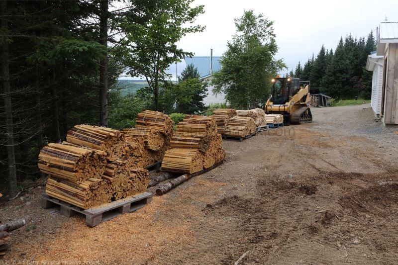 sawmill,pine,tamarack