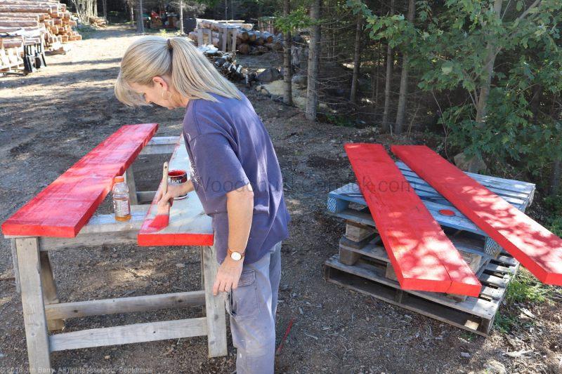 Painting poplar boards