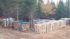 Stacked and crated firewood for sale.