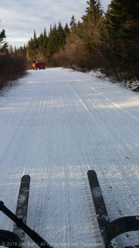winter firewood, woods roads, Nova Scotia, Antigonish