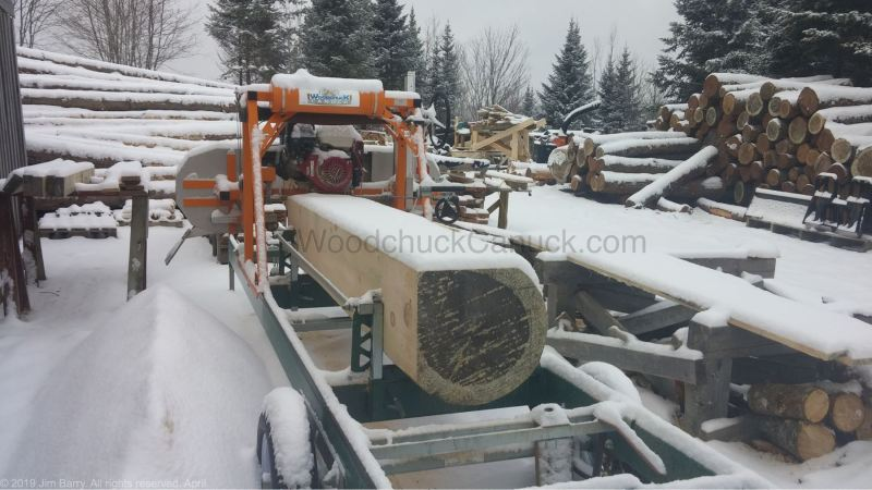 sawmilling, big pine logs, Antigonish County, Guysborough County, Pictou County, Nova Scotia