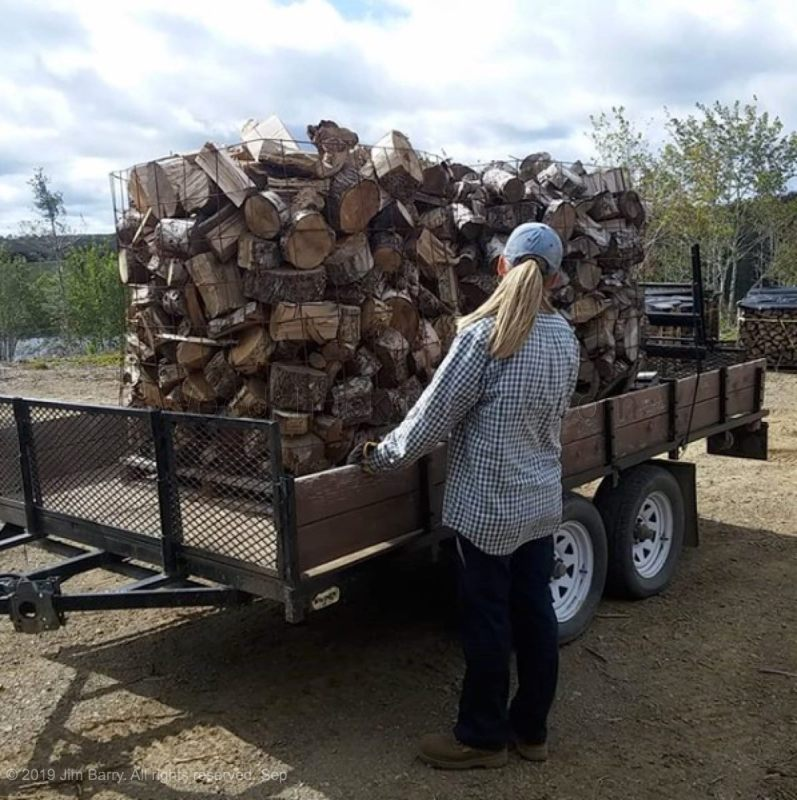 Gina loading a cord of firewood ends.