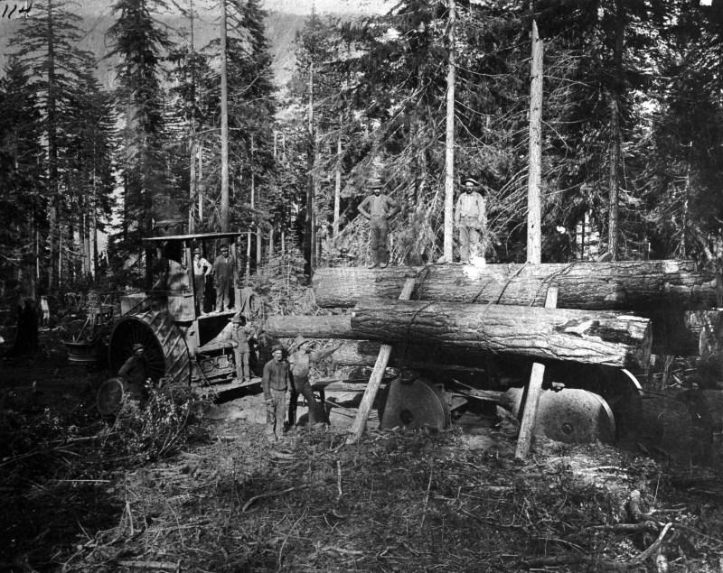 1896 Logging.