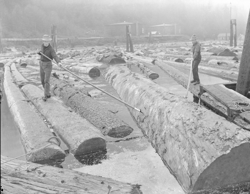 1944 Log drivers sorting logs in the boom at Pacific Mills.