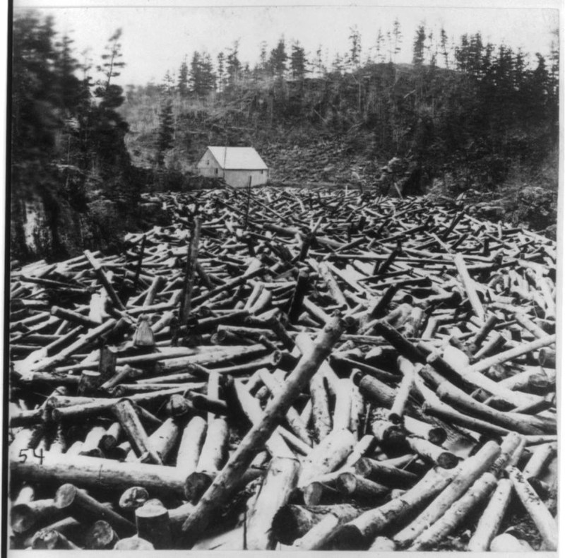 River log jam.