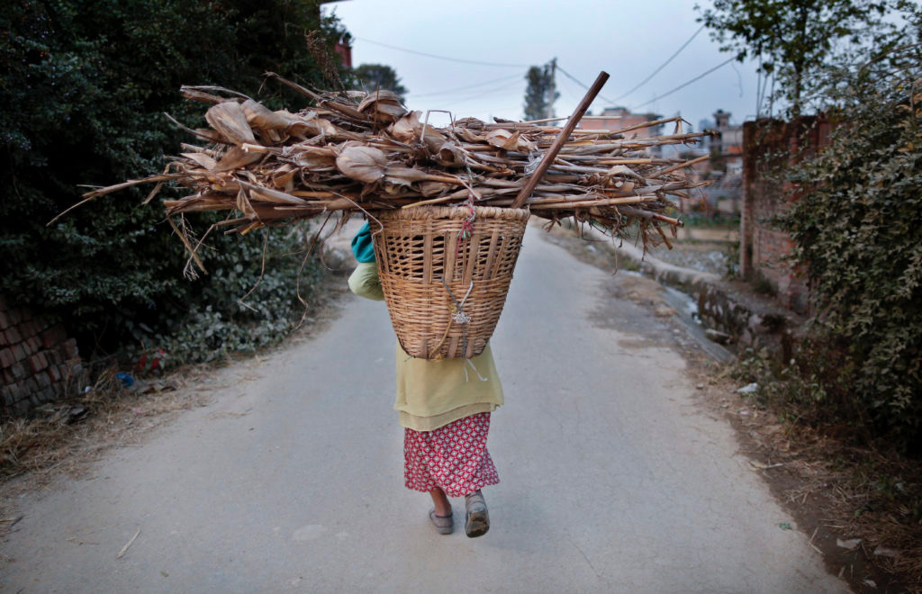 A Nepalese woman carries firewood on her back.