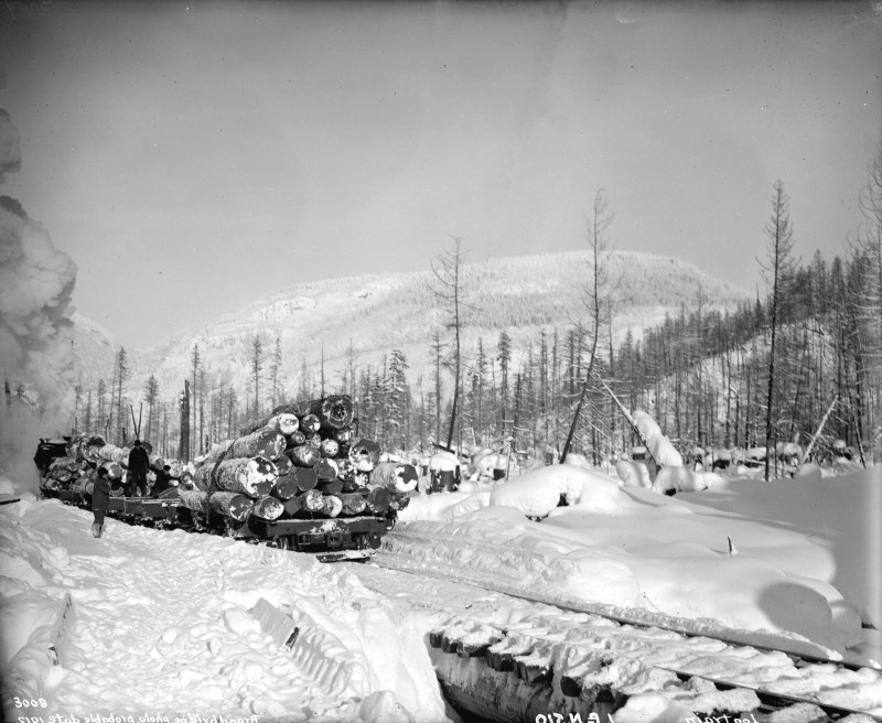 1912 Winter logging