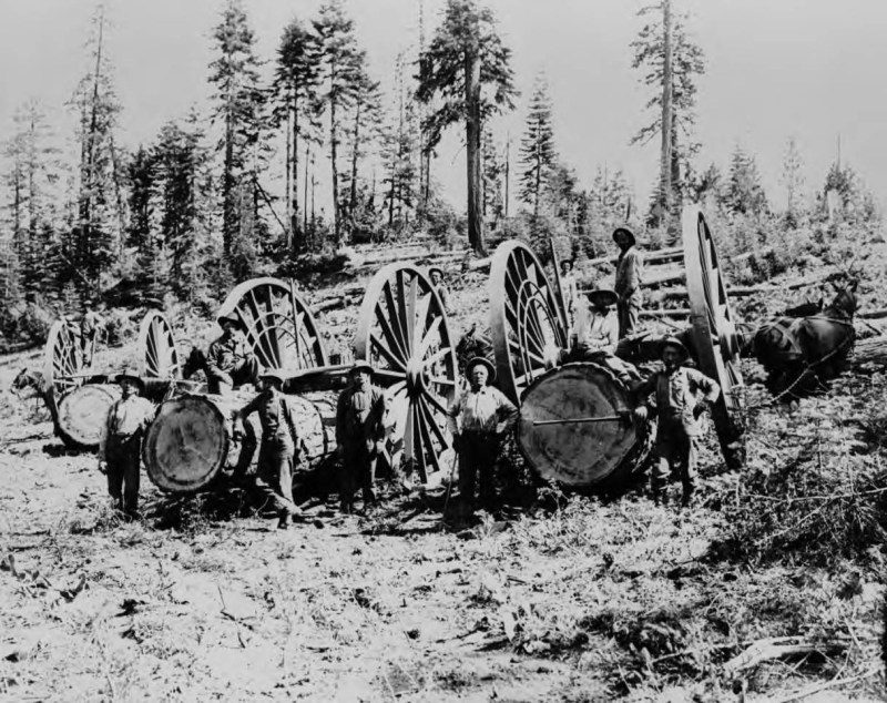 1910 Logging near Clio, Plumas County, CA.