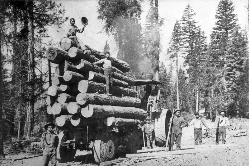 1895 Loading Lumber.