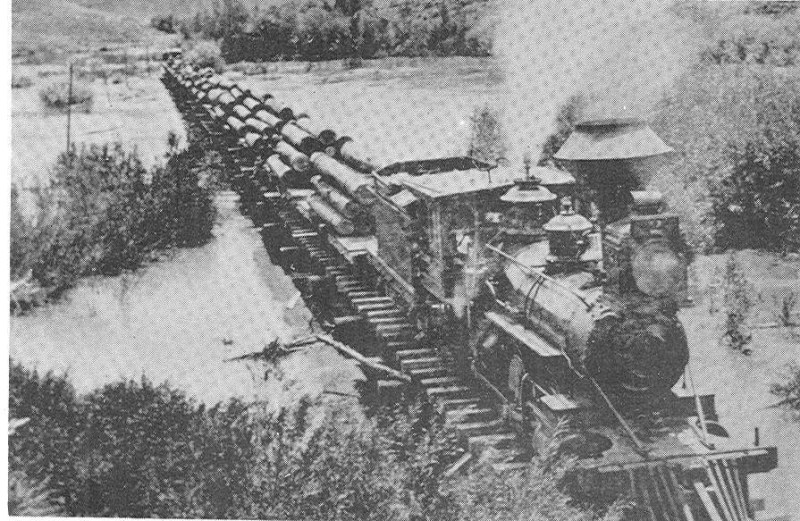1898 A locomotive pulling a load of logs through Bowen Valley about five miles west of Baker.