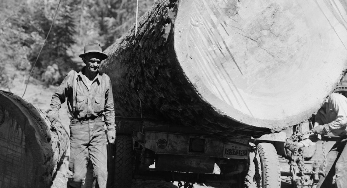 1939 Red River Lumber Company Humbug Logging Operation.