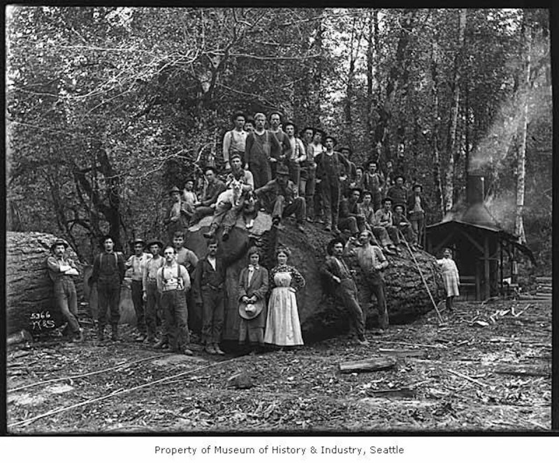 1907 Loggers with large log.