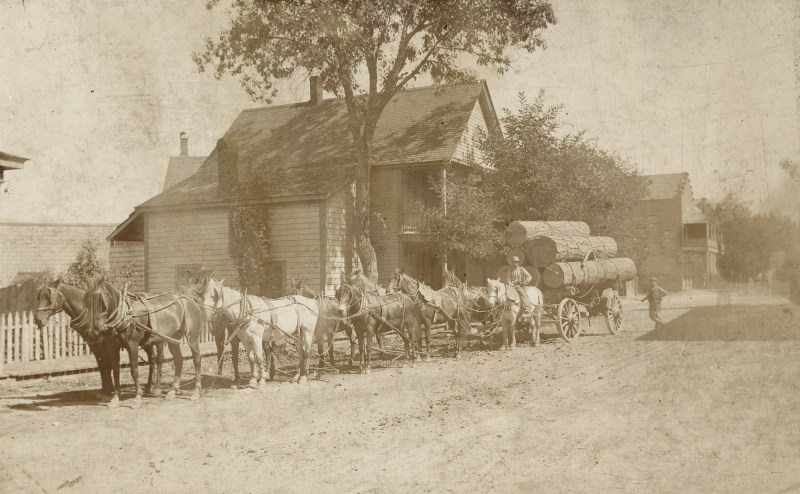 1893 Charles W. Blakesley with team hauling logs.