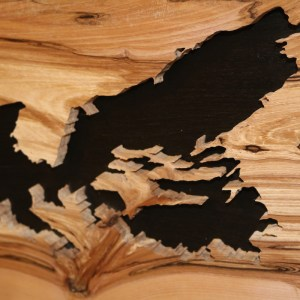Wood map of Nova Scotia