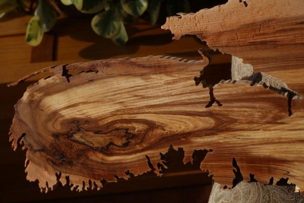 Wood map of Nova Scotia #80
