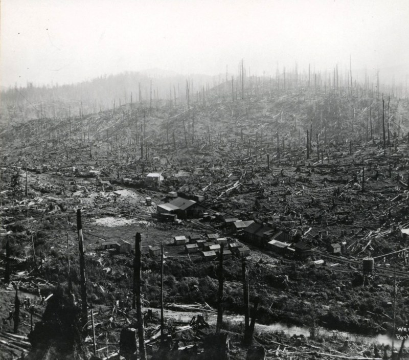 Crossett Western Lumber Co.